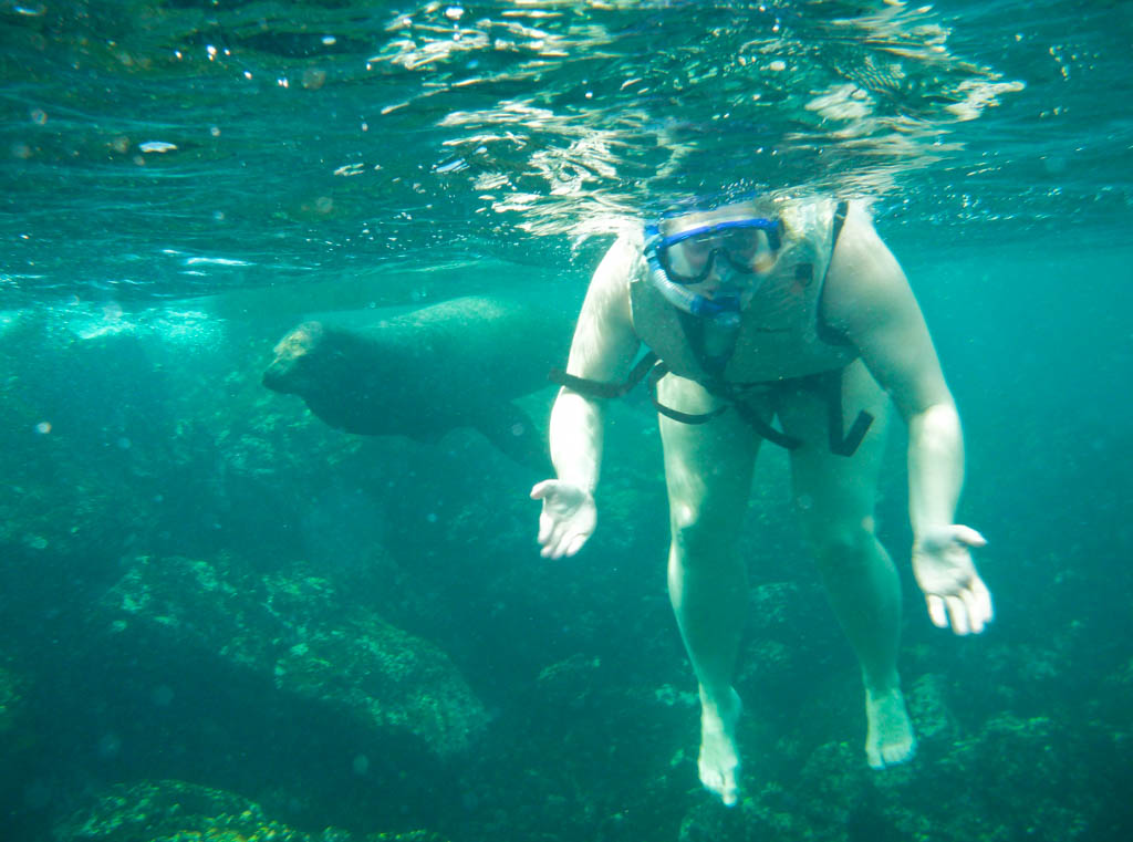 Shari snorkelling with a sea lion