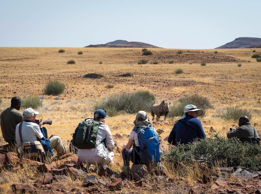 Travellers crouching to watch rhino on walking Safari